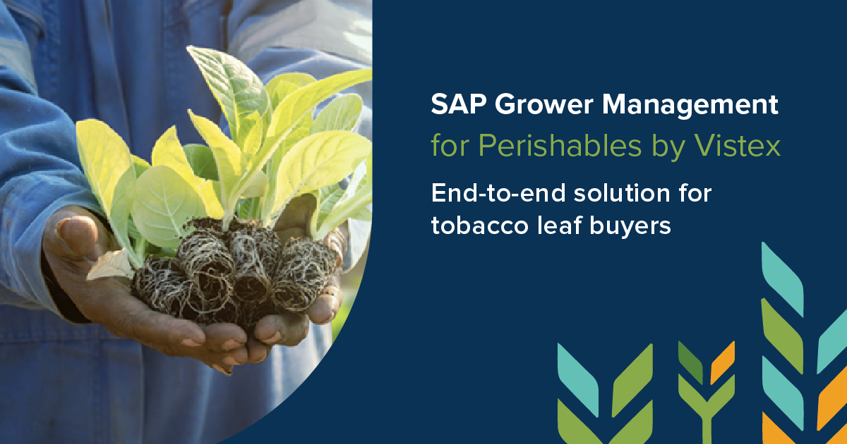 SAP Grower Management End-to-End Solution for Tobacco Leaf Buyers